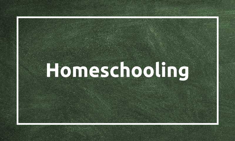 Homeschooling: aprendre a programar al teu ritme amb Codelearn